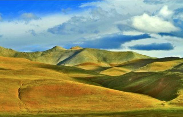 西藏进一步优化招商引资政策