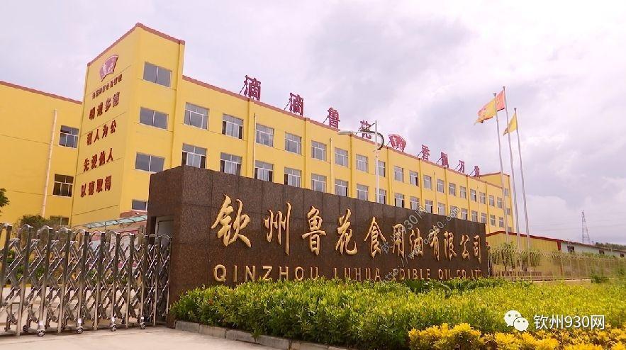 十三年招商引资2189.82亿元 东盟博览会助力钦州跨越发展